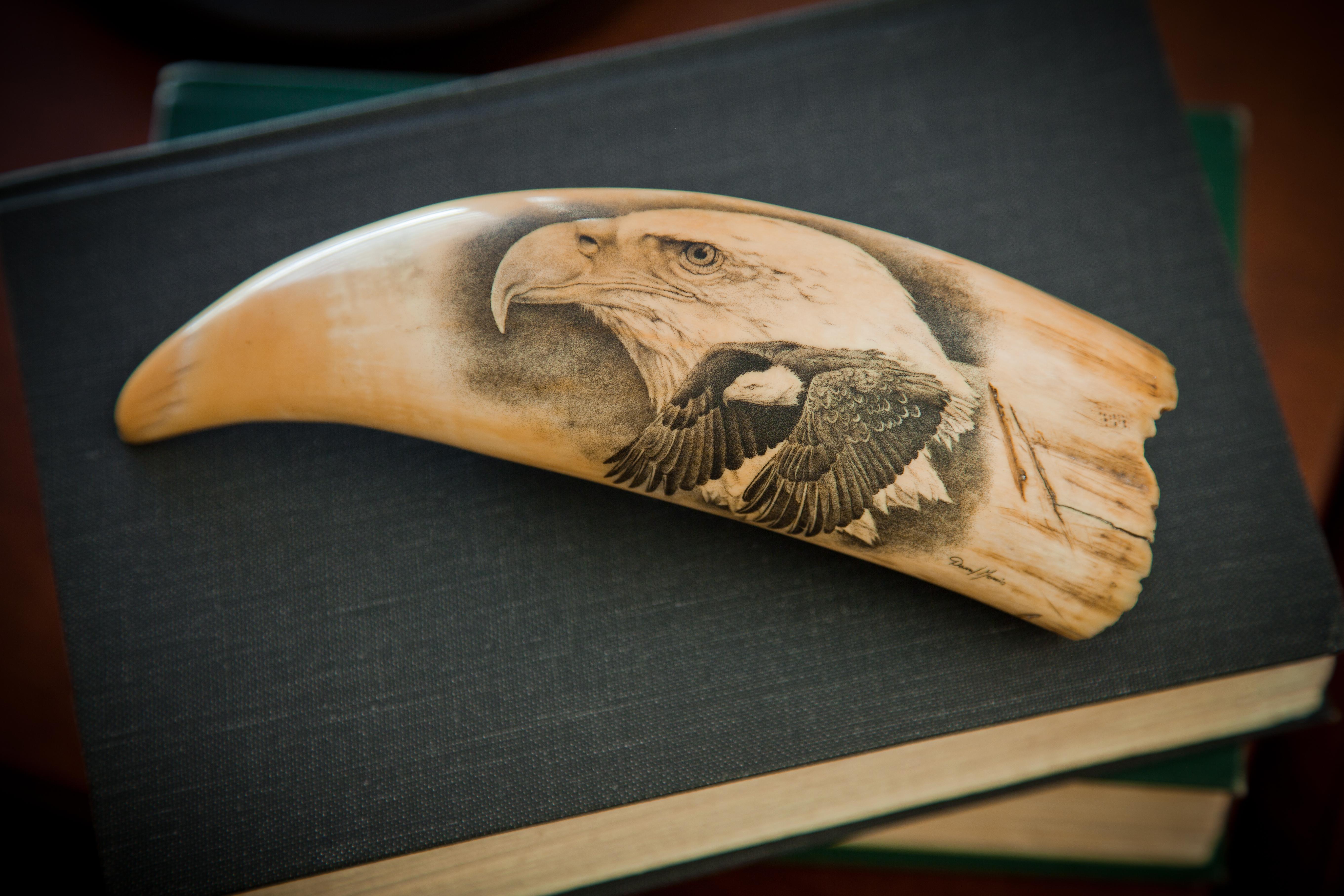 Eagle Scrimshaw.jpg