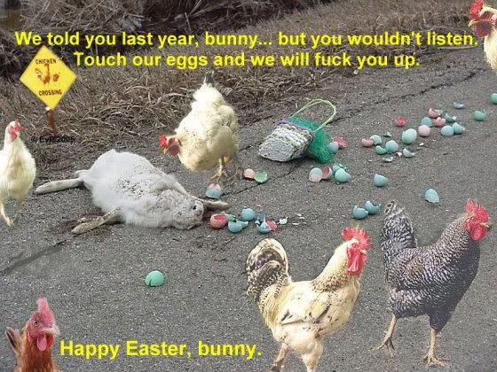 easter-humor-chickens-killed-easter-bunny.jpg