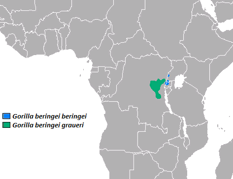 Eastern_Gorilla_area.png
