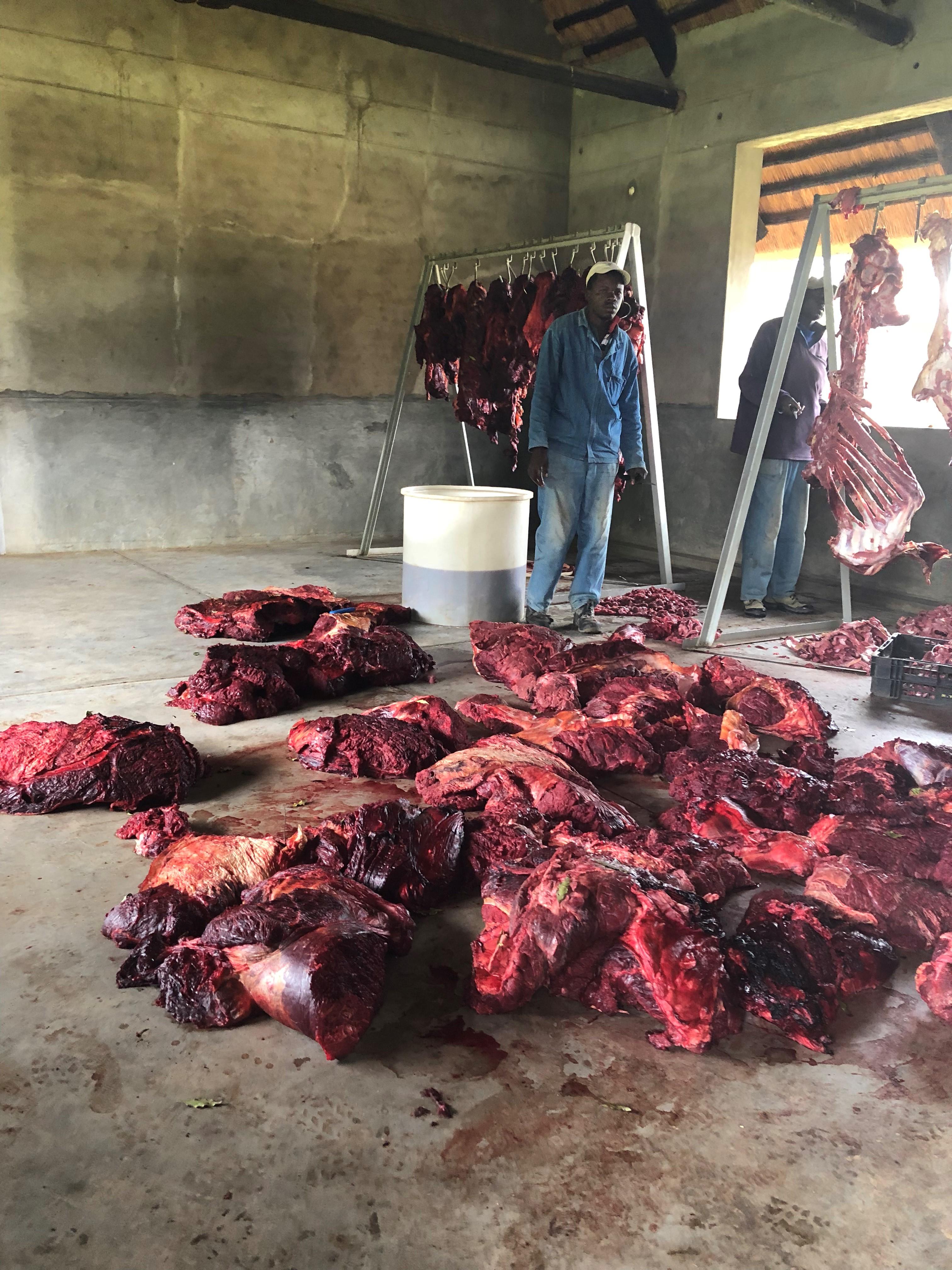 ele meat (2).jpg