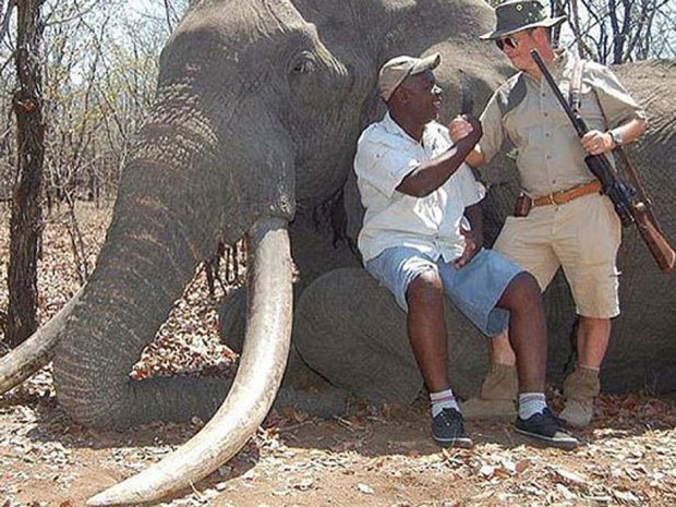 elephant-hunt.jpg