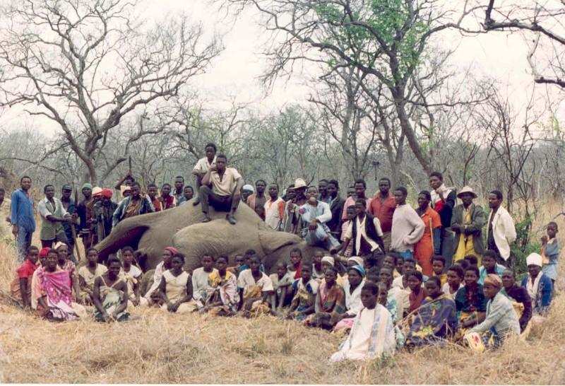 Elephant Villagers .jpg