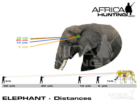 elephant_distances_2.jpg