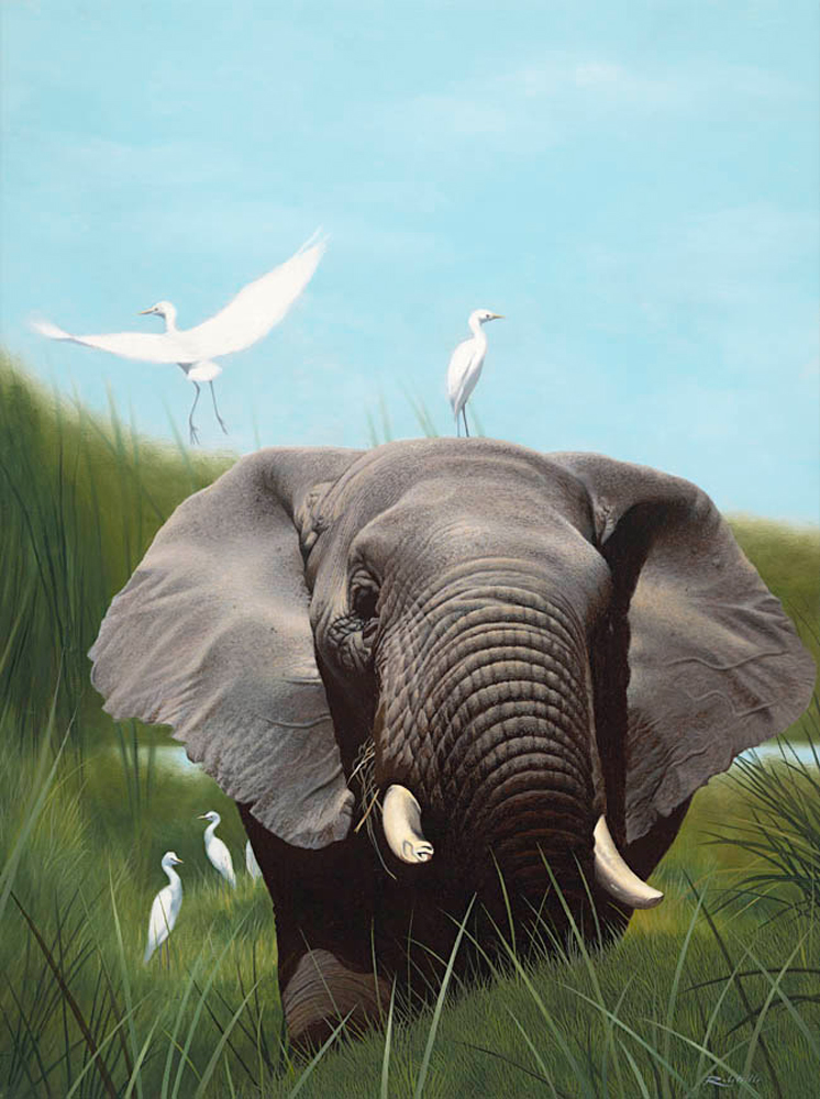 elephants-with-egrets-16x20.jpg