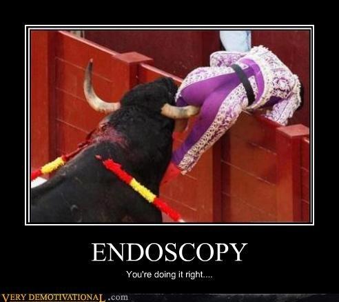 endoscopy.jpeg