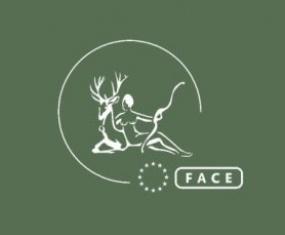 face_logo_white_on_green_graphic.jpg