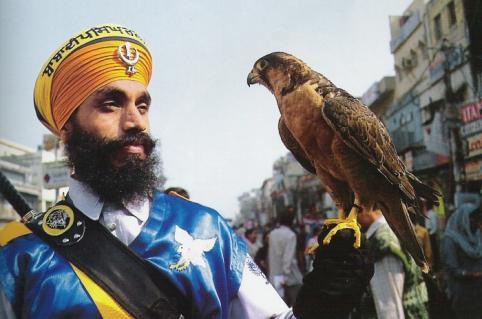 falcon-india.jpg