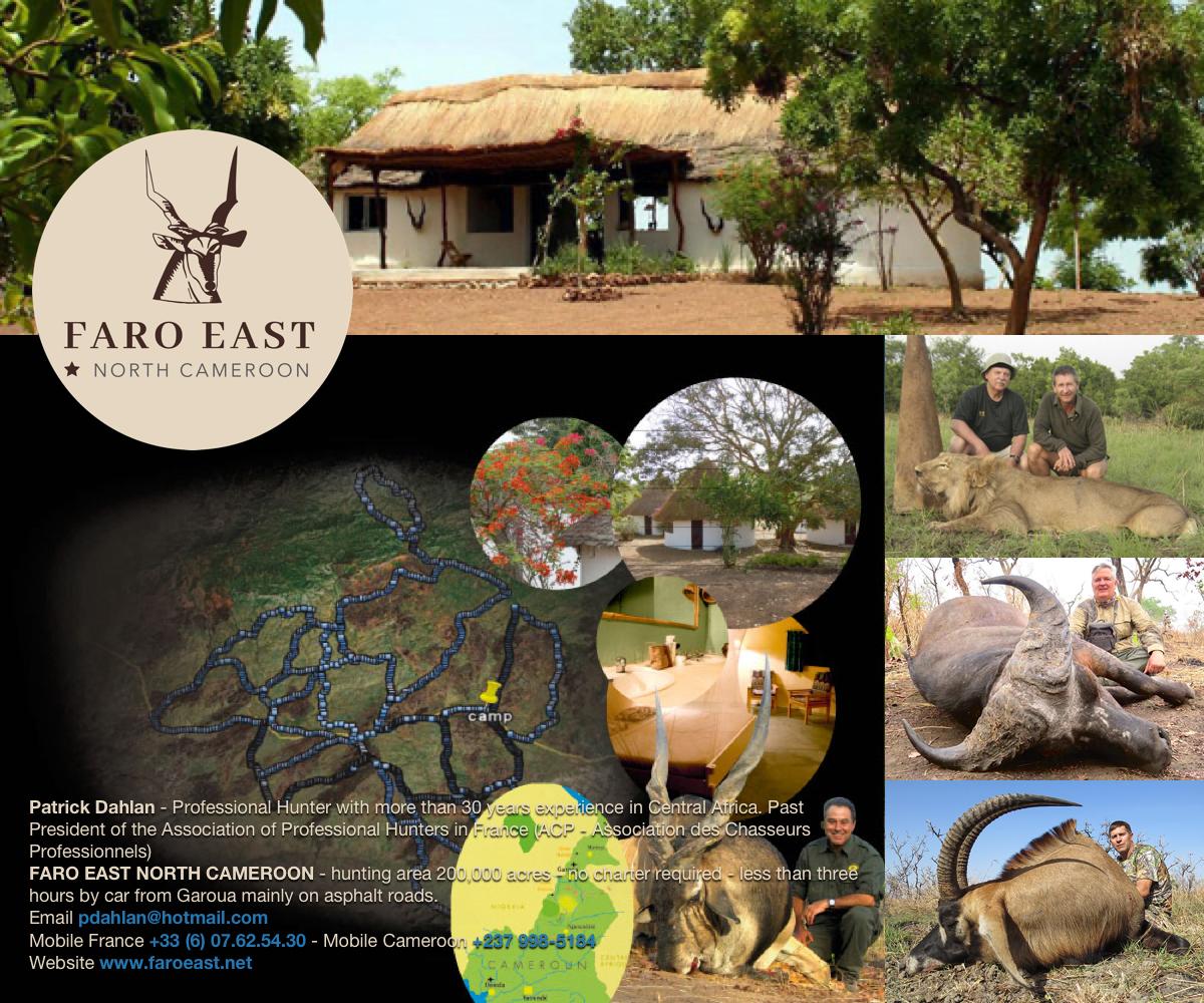 faro-east-north-cameroon.jpg