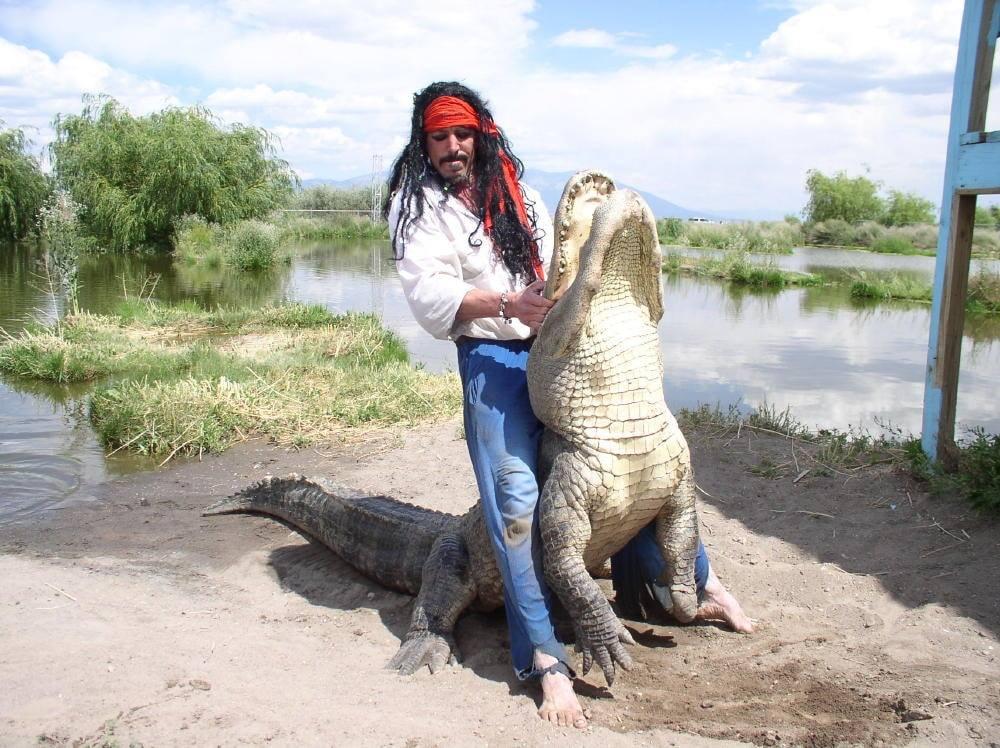 Florida gator moments 3.jpg