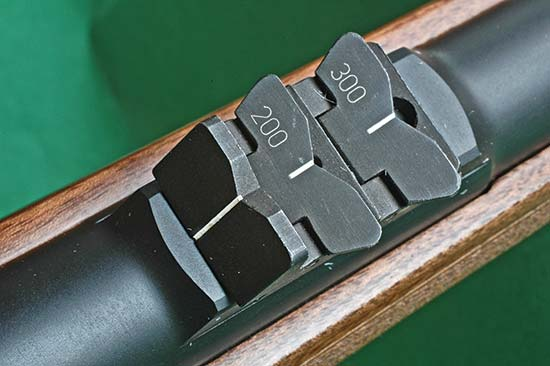 G1218-IRON-express-sights.jpg