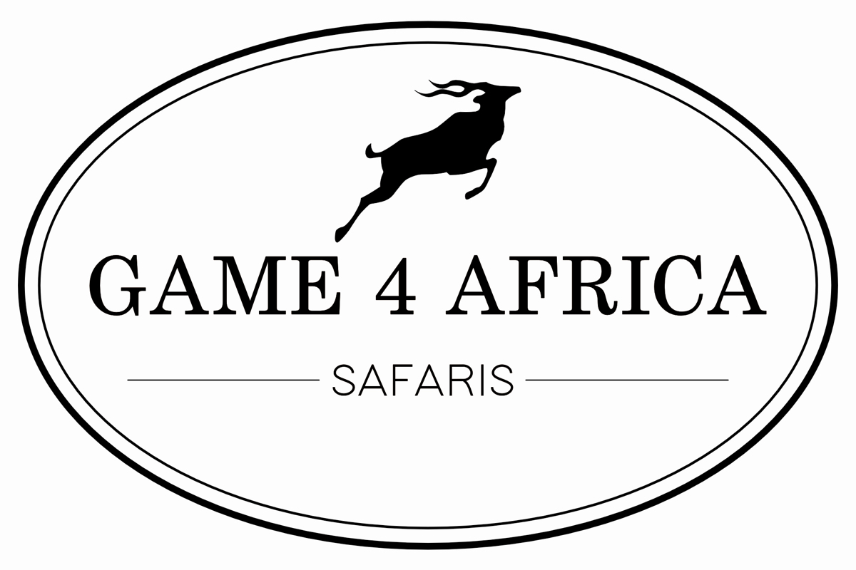 game-4-africa-01.jpg