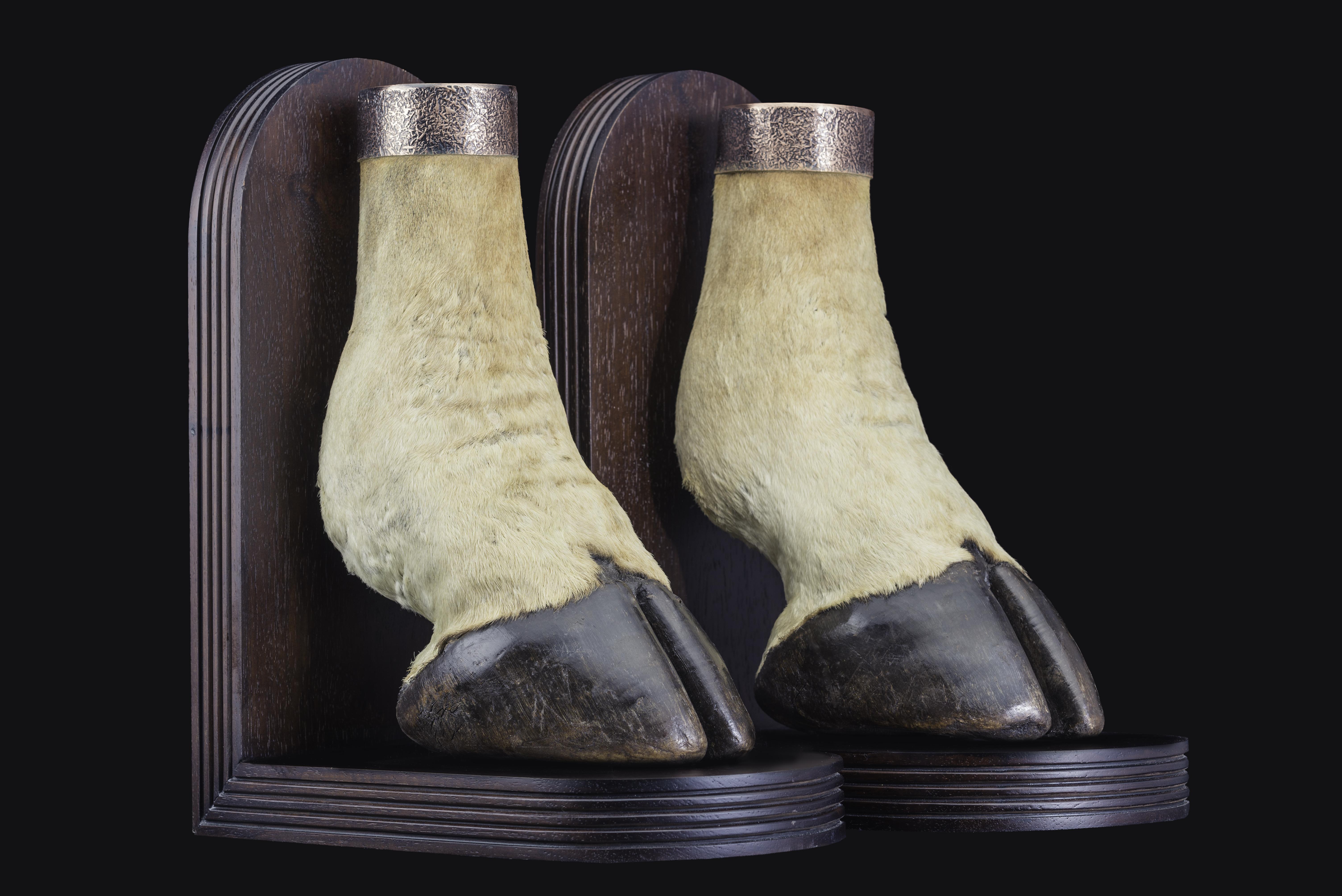 giraffe-feet-single-bookends-ff-046-jpeg-jpg.424566