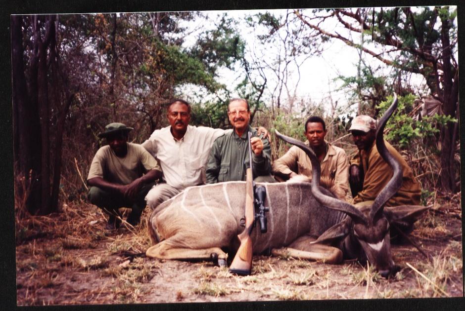 Greater Kudu 2.jpg