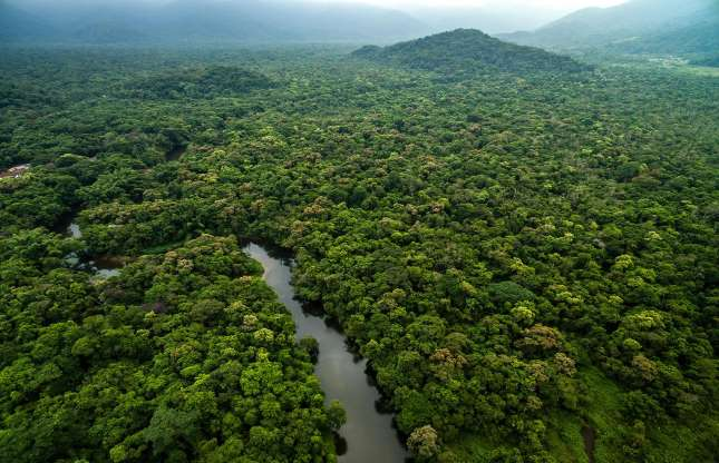 Guyana, South America.jpg