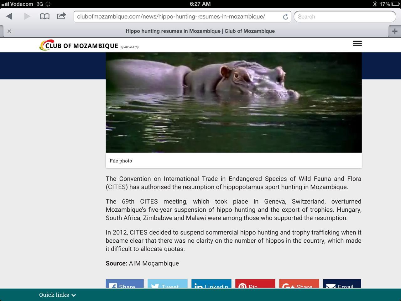 Hippo & Croc Moz.jpg