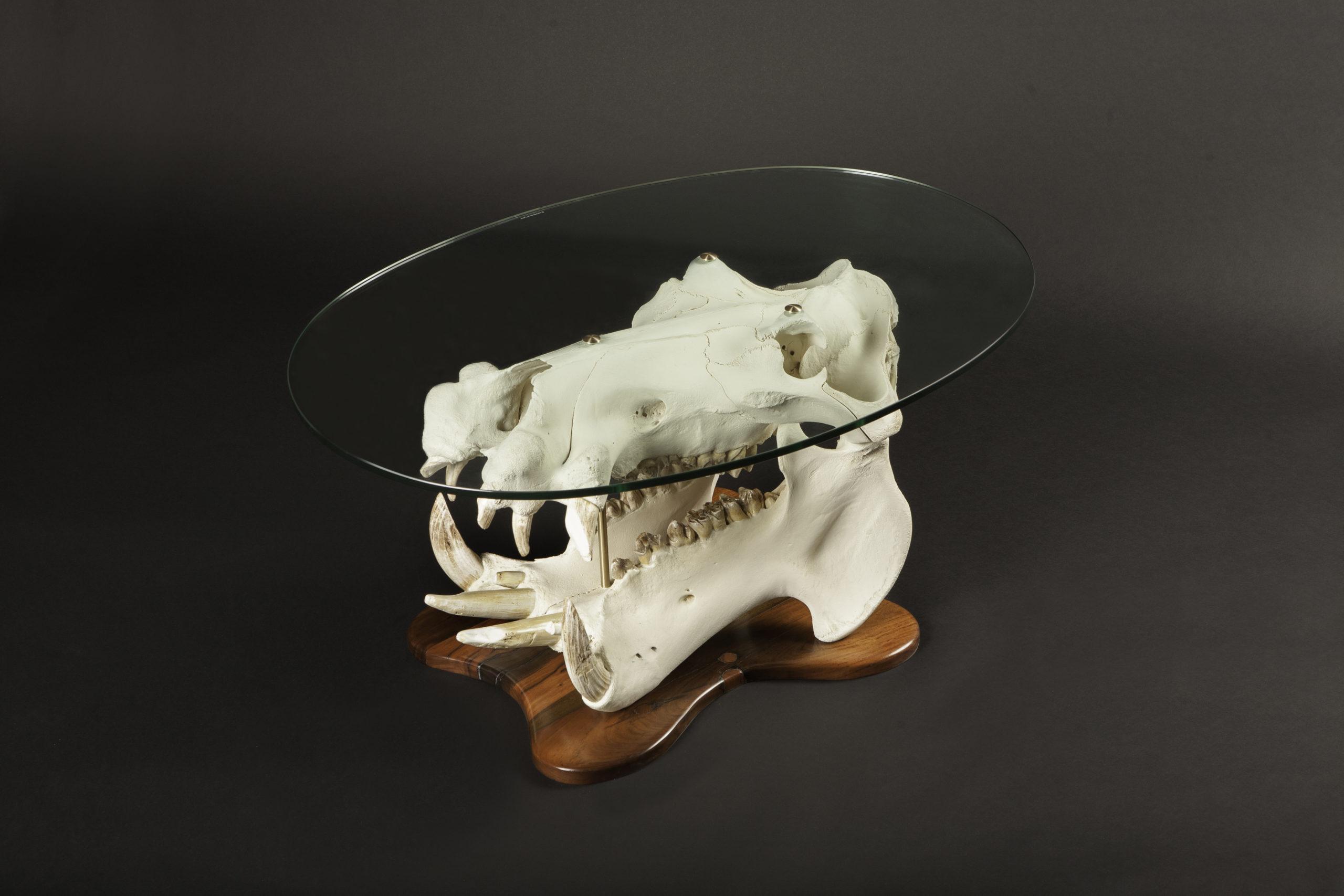 Hippo-skull-glass-table-scaled.jpg