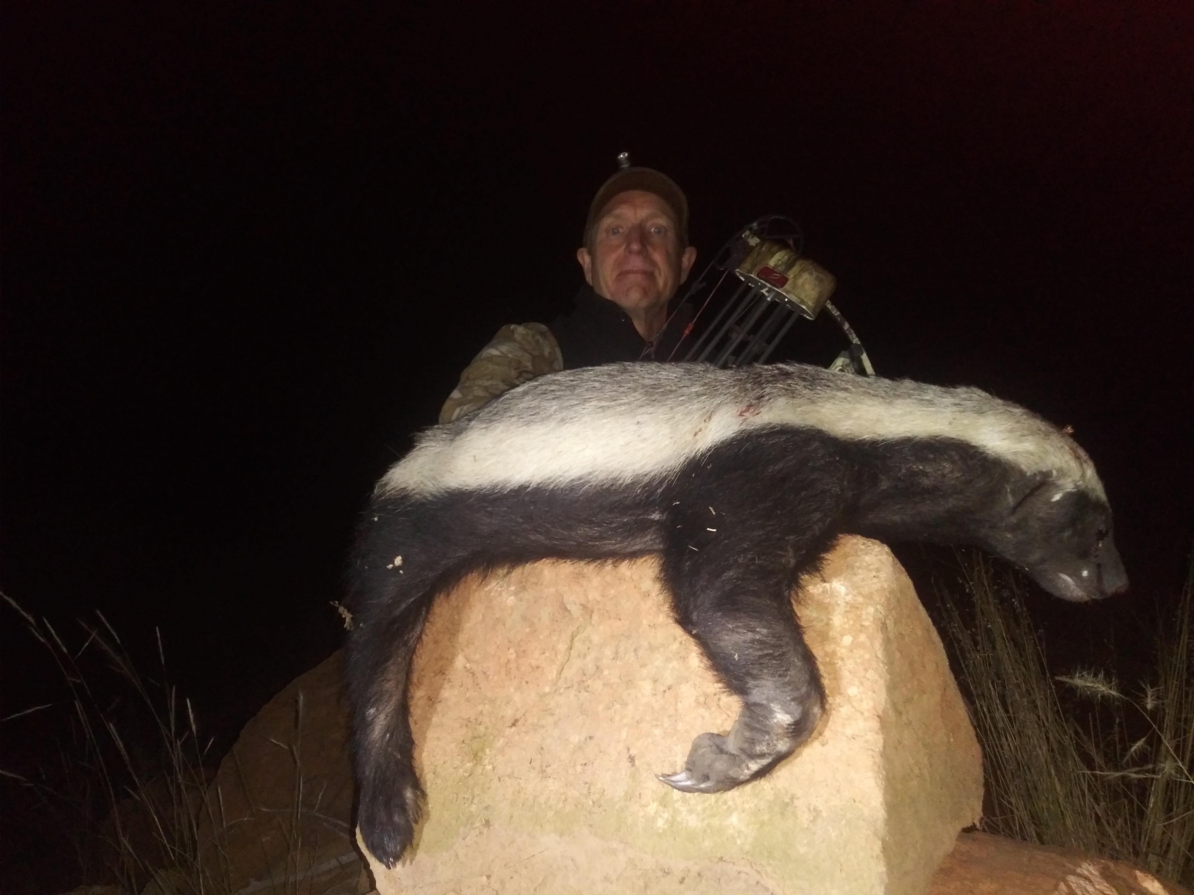 Honey Badger tsala 2021.jpg