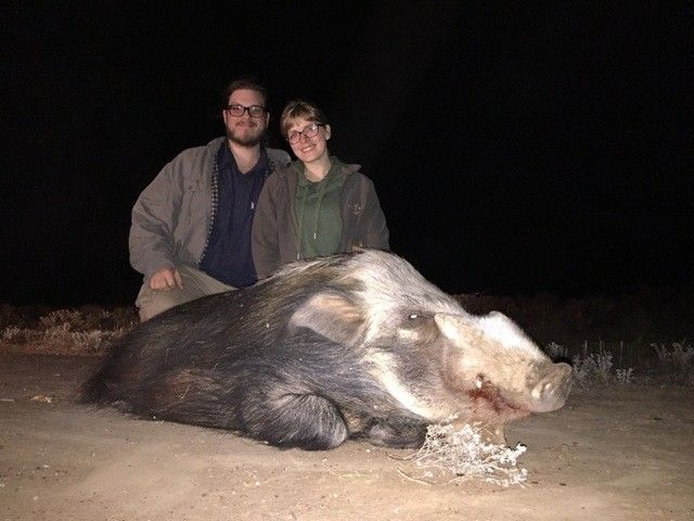 hunting_bushpig_with_karoo_wild_safaris.jpg