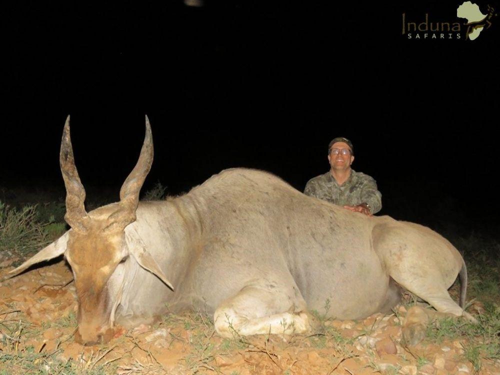 hunting_eland.jpg