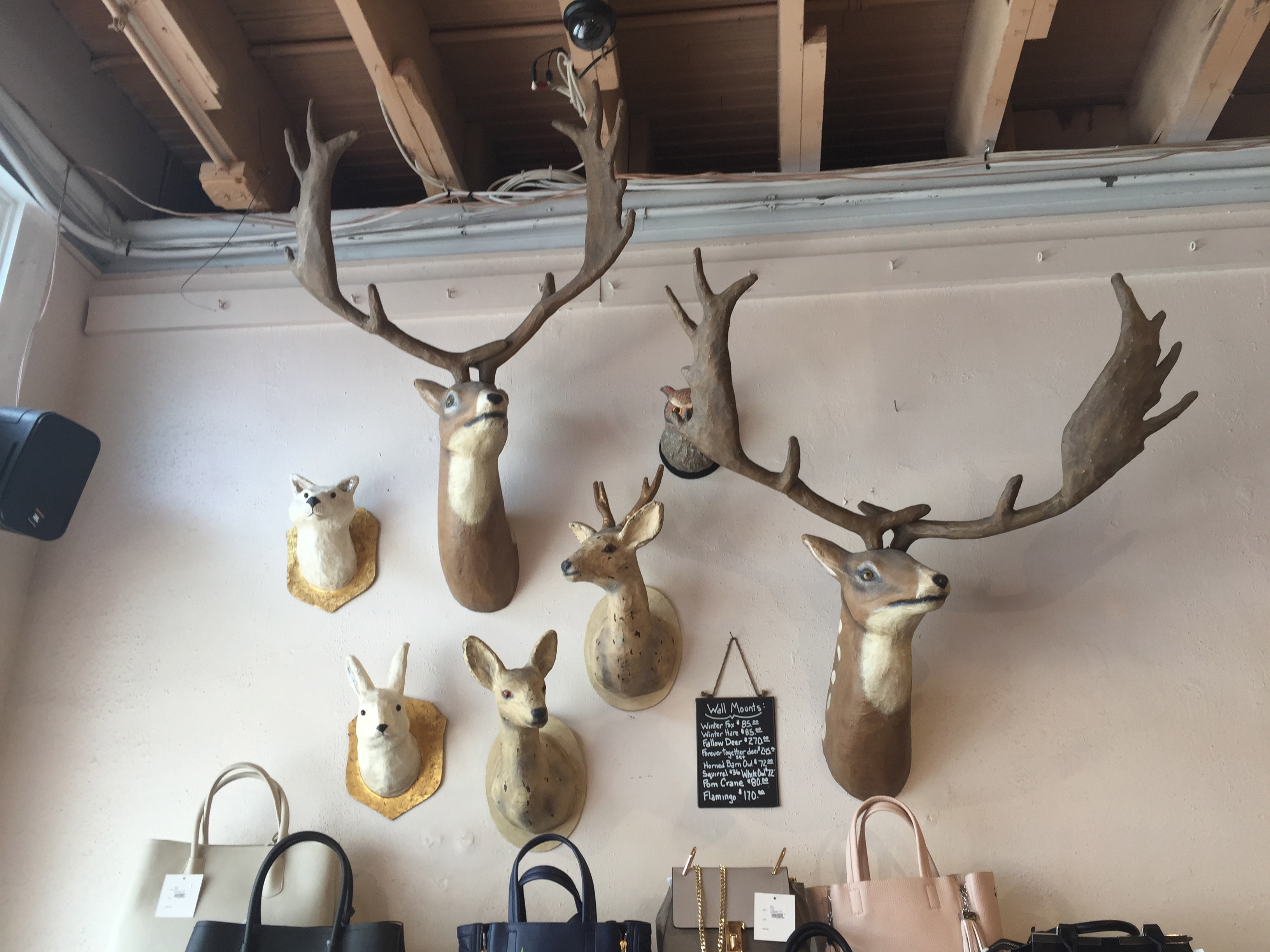 Apparently Its Cool Today To Put Fake Hunting Trophies On Your Wall I Think They Sell Them Vegans
