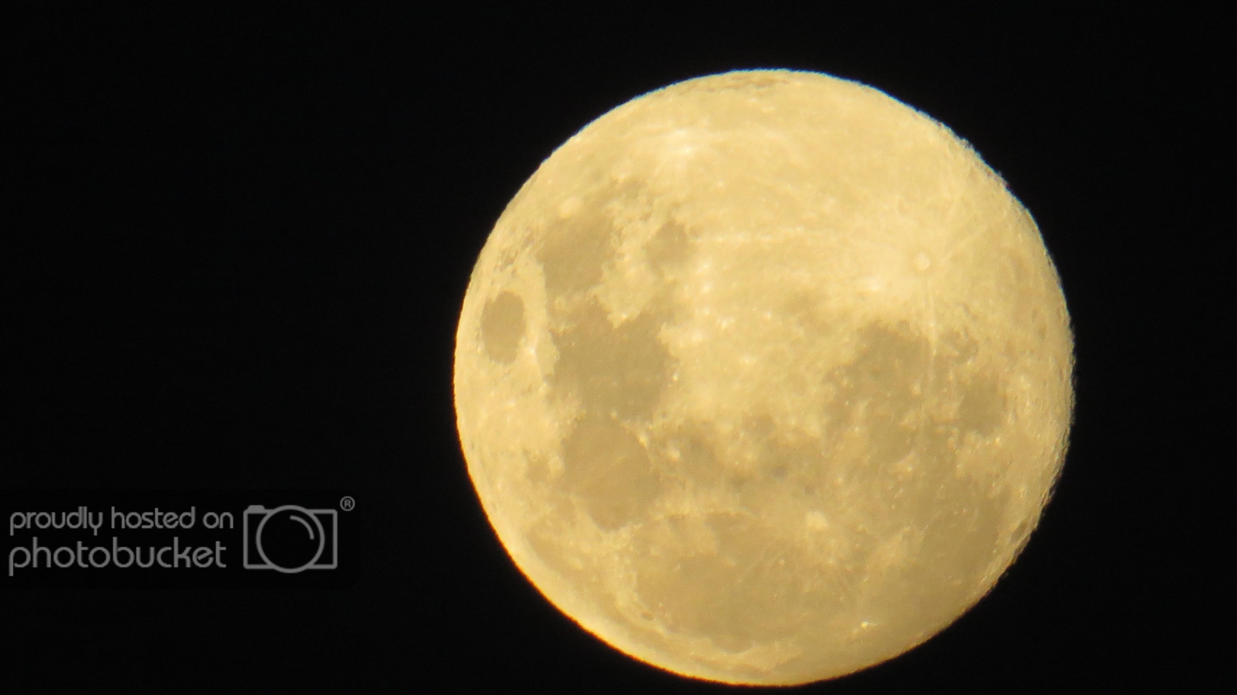 IMG_5630 Moon Patrick_zps9lgskr2x.jpg