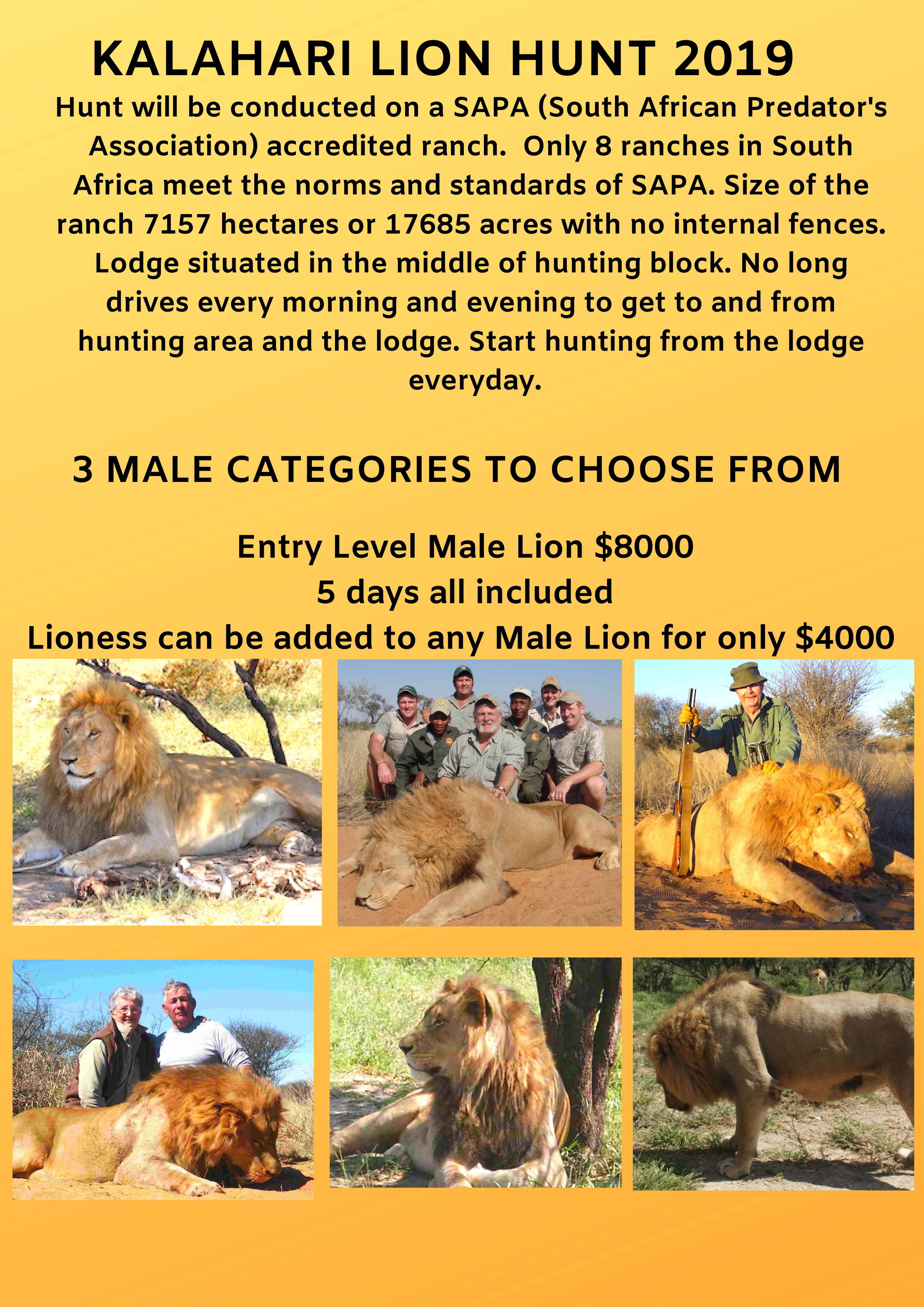 Kalahari Lion Hunt 2019-1.jpg