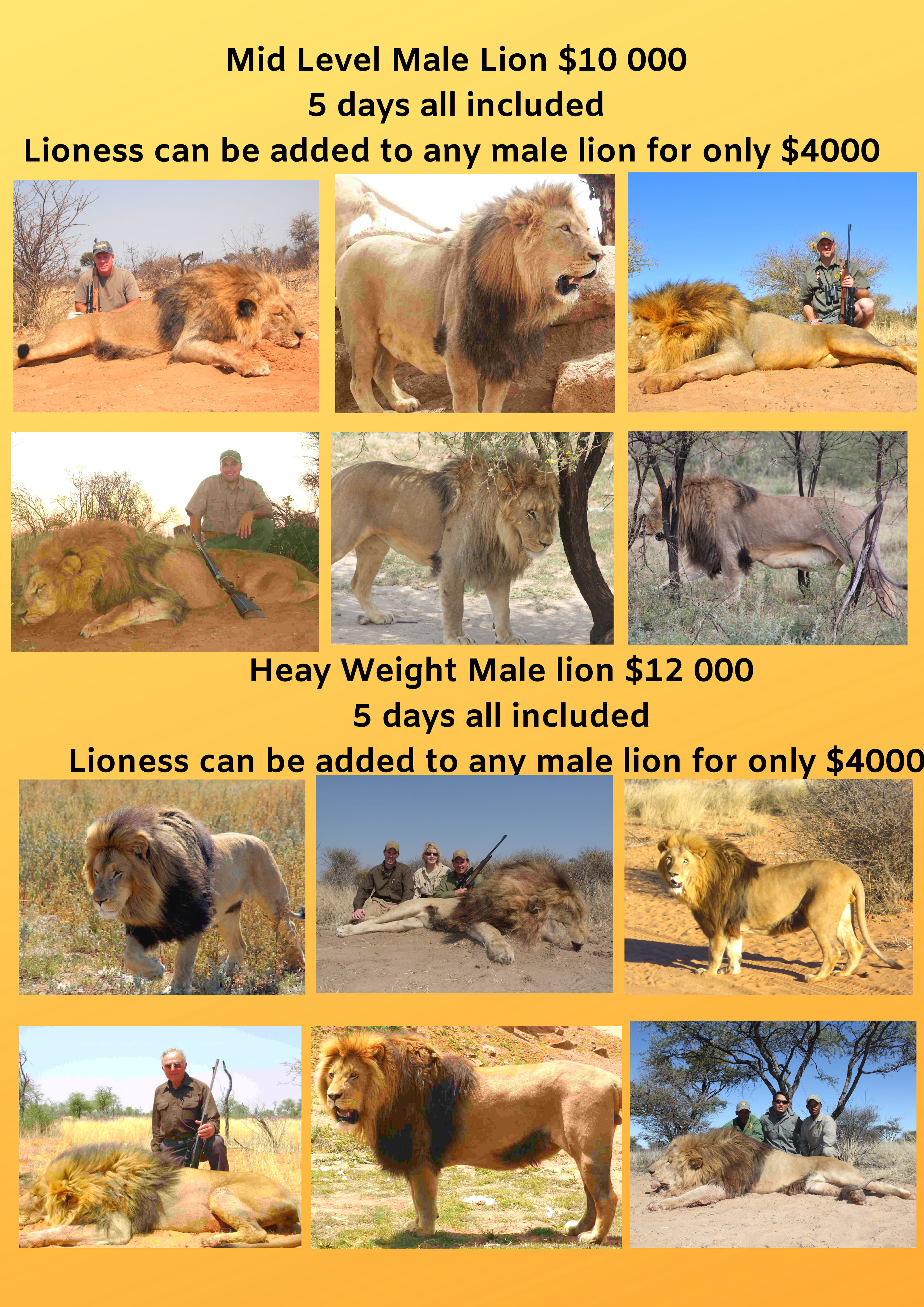 Kalahari Lion Hunt 2019-2.jpg