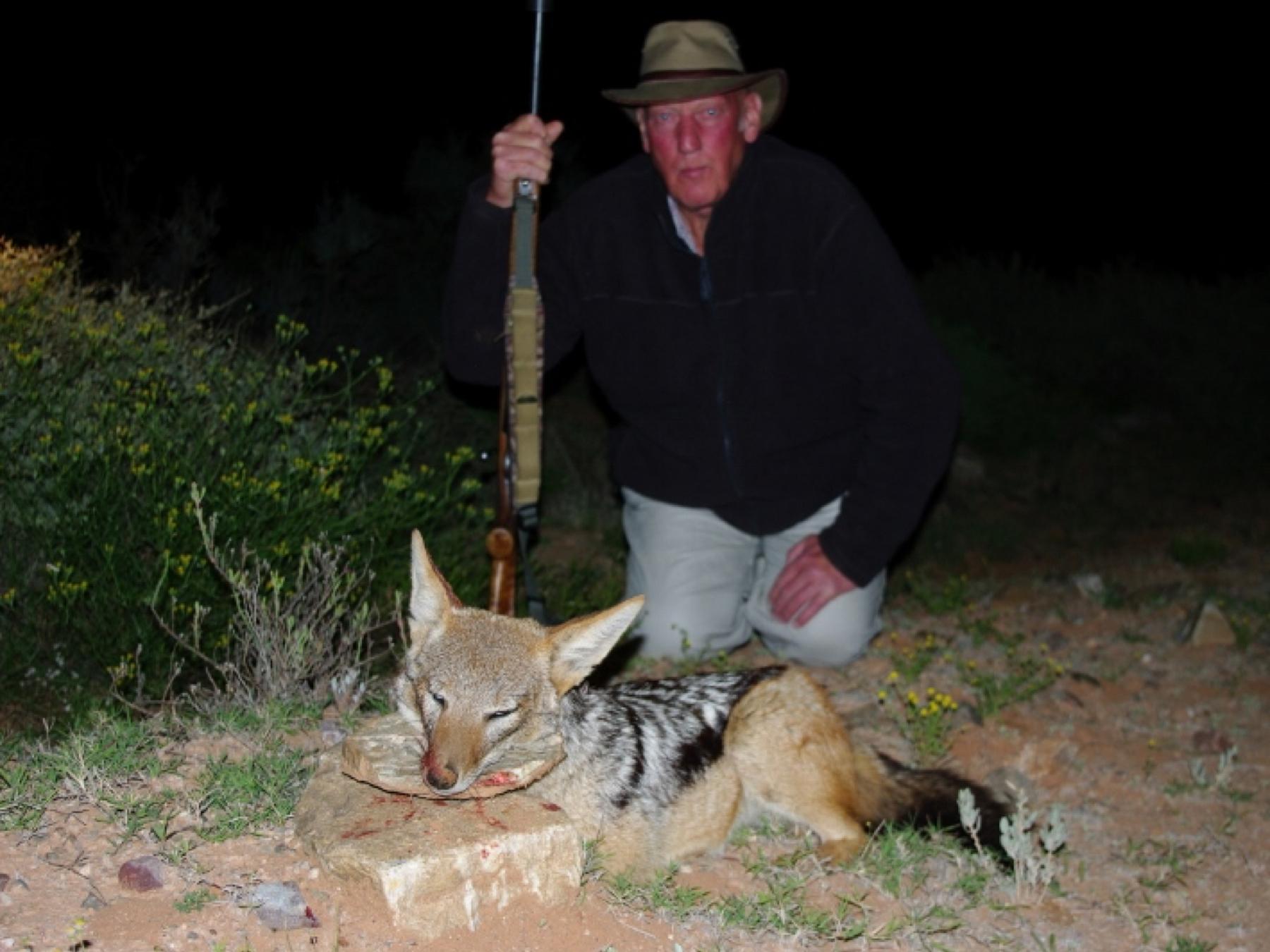 karoo-wild-safaris-24.jpg