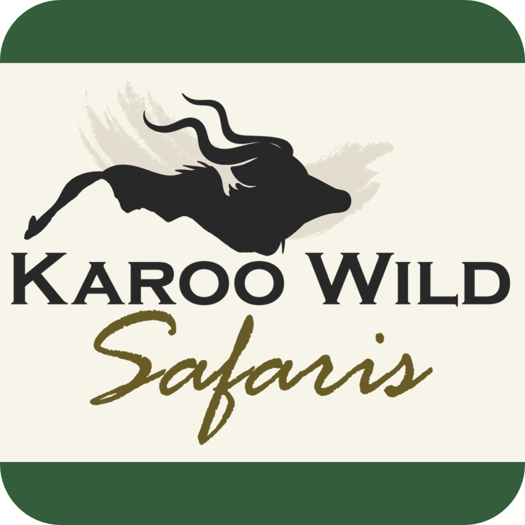 karoo-wild-safaris.jpg