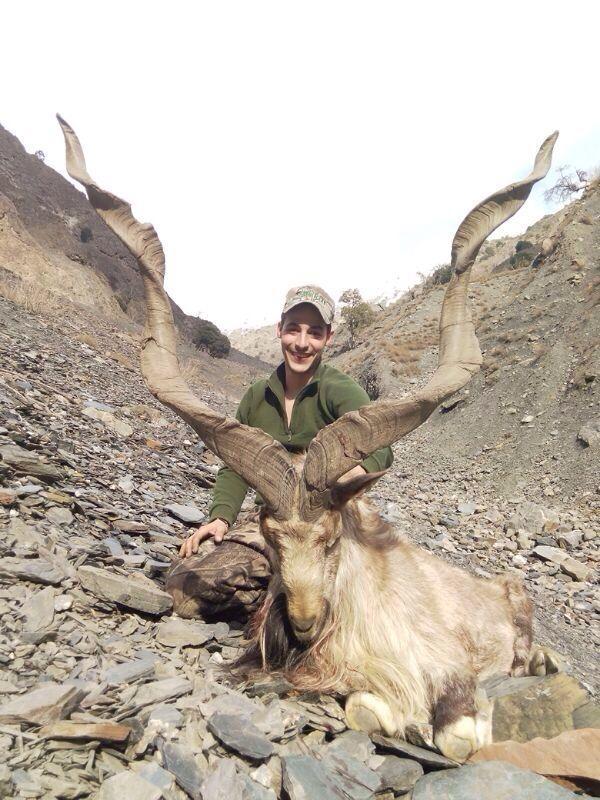 Kashmir_Markhor_Pakistan(1).jpeg