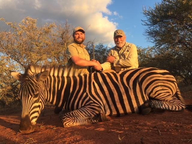 kevins zebra.jpg