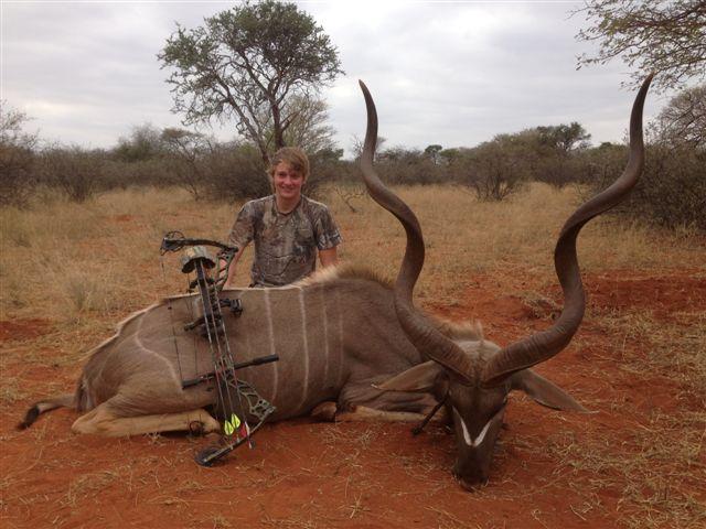 Kudu1 2013.jpg