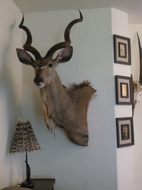 KuduMount.jpg