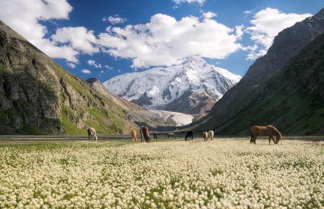 Kyrgystan.jpg