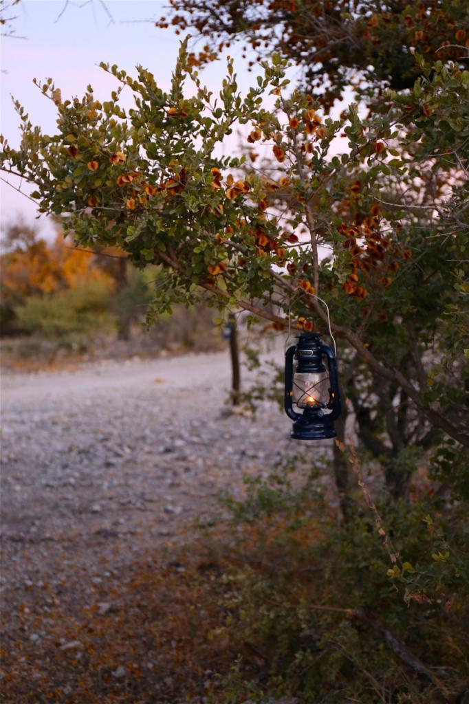 LanternsontheWalkway_zpsc1fcbd79.jpg
