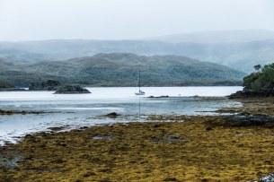 Leica-Hunting-Blog_Niall-Rowantree_rainy-Ardnamurchan-klein.jpg