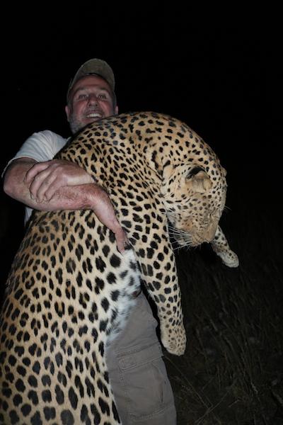 leopardbm.jpg
