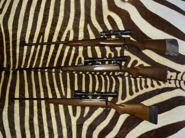 LH rifles.jpg