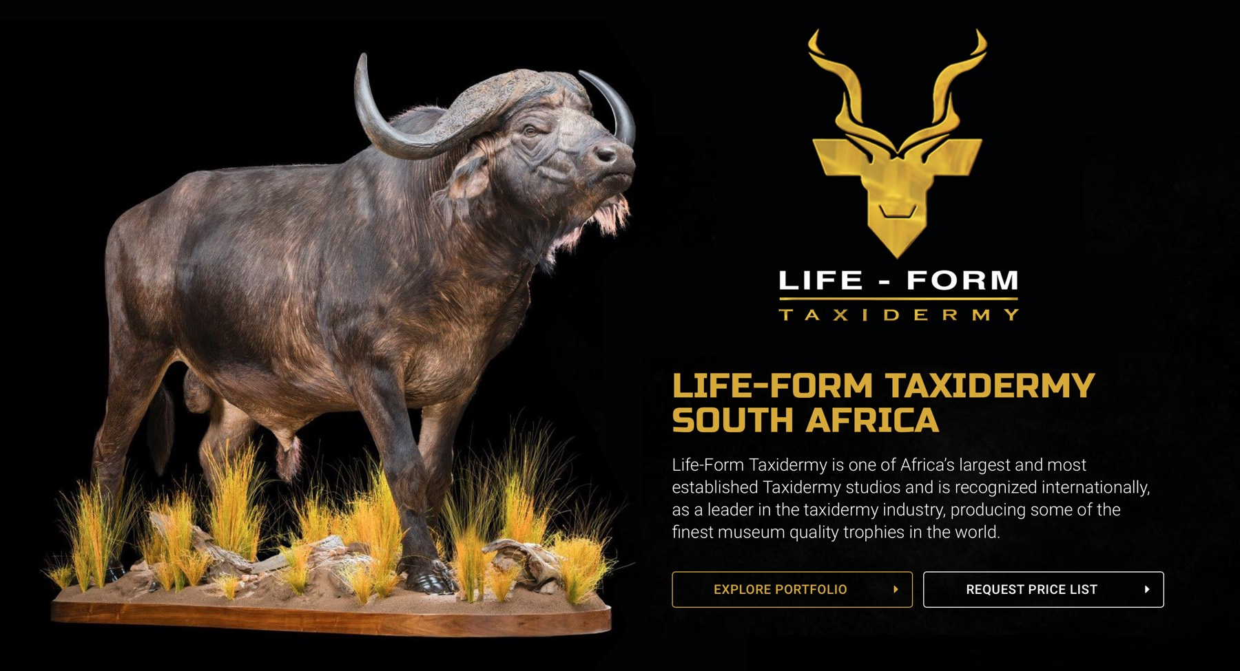 life-form-taxidermy-01.jpg