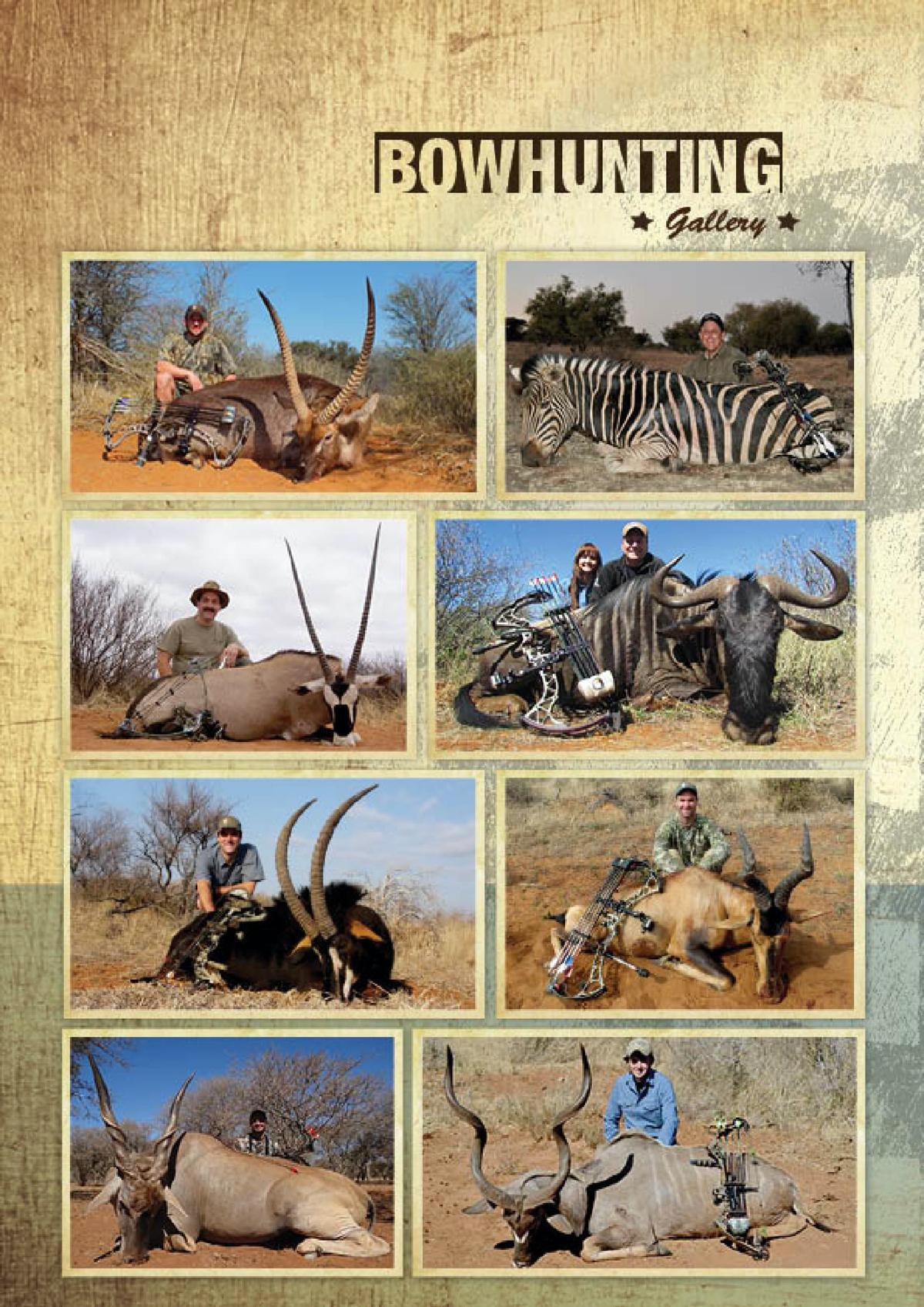 limcroma-safaris-06.jpg