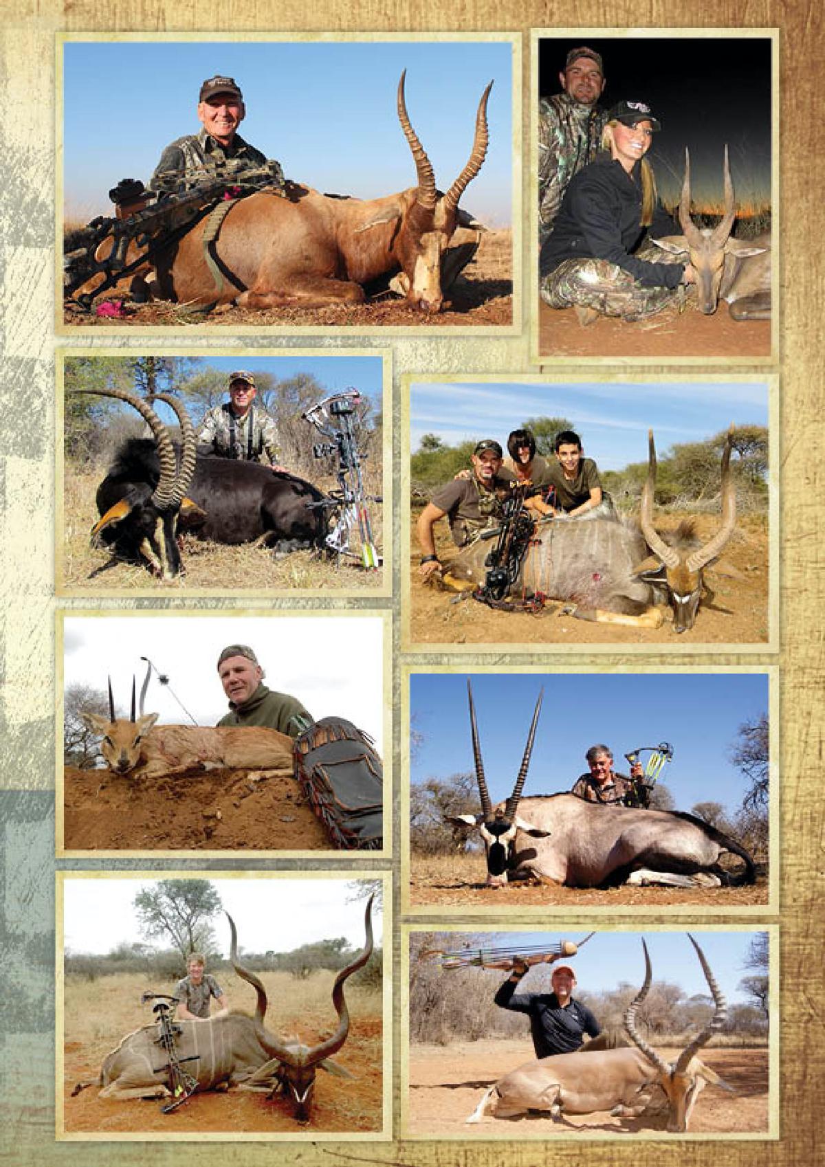 limcroma-safaris-07.jpg