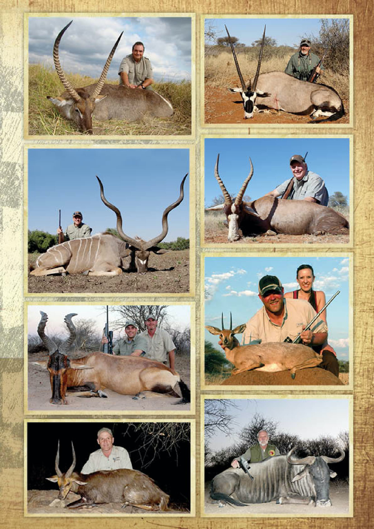 limcroma-safaris-11.jpg