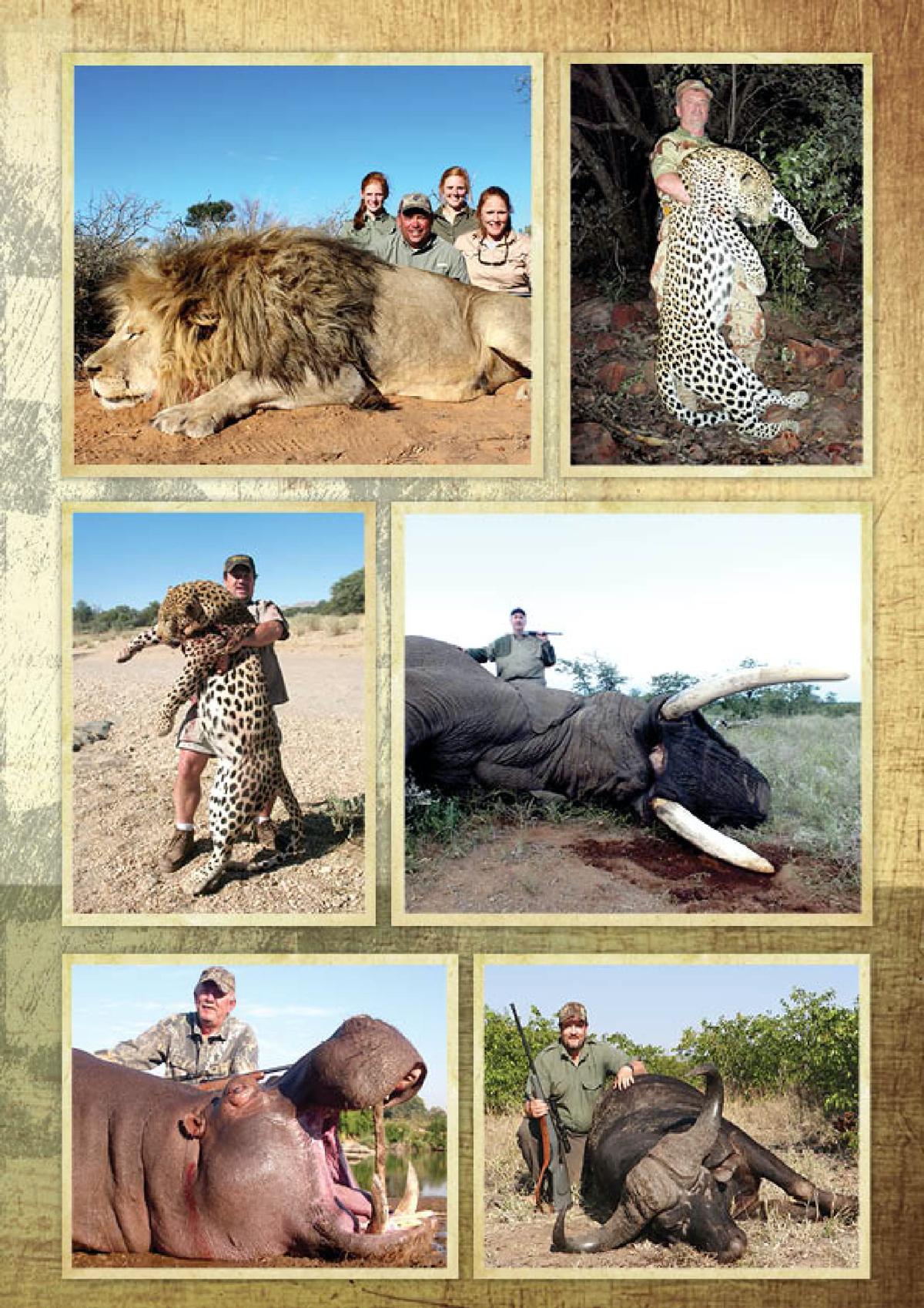 limcroma-safaris-15.jpg