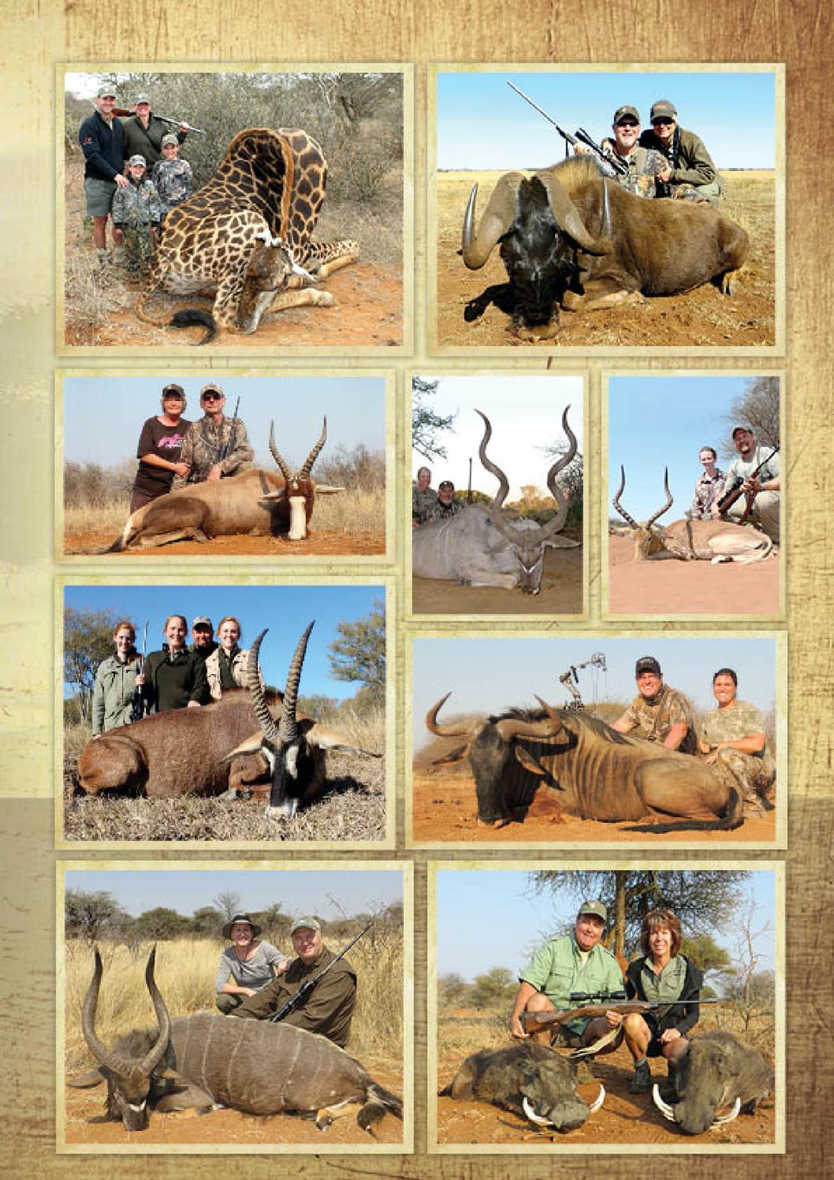 limcroma-safaris-17.jpg