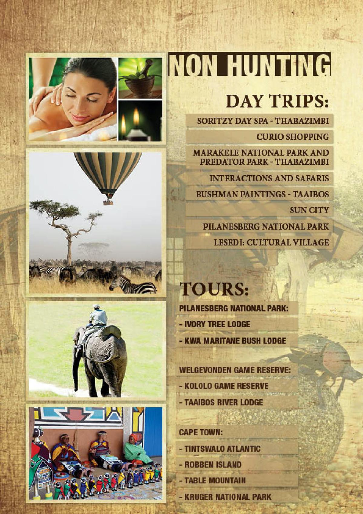 limcroma-safaris-18.jpg