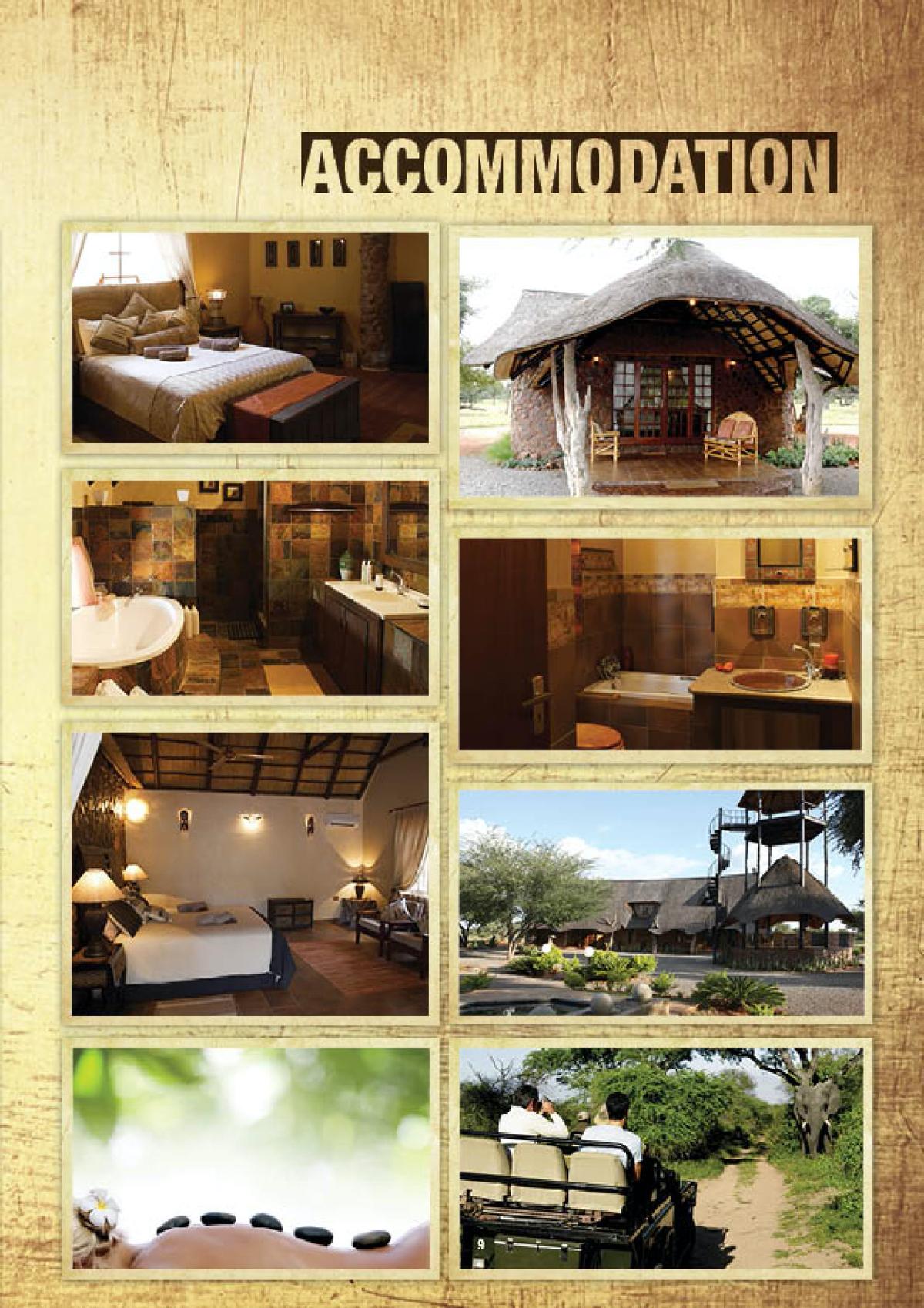 limcroma-safaris-19.jpg