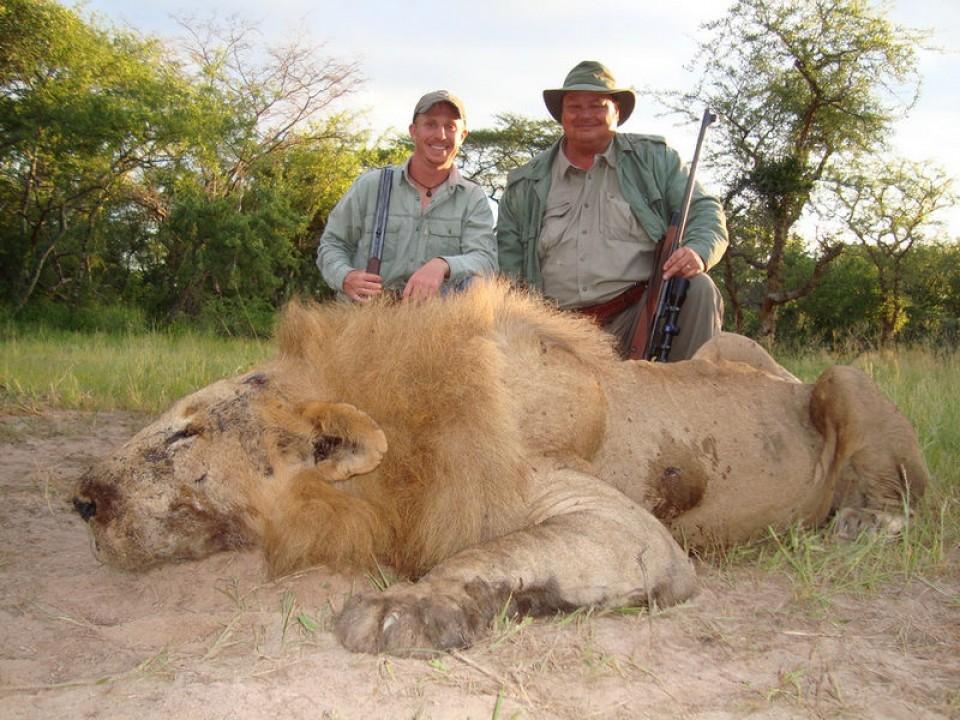 lion-07-9d6a720138.jpg