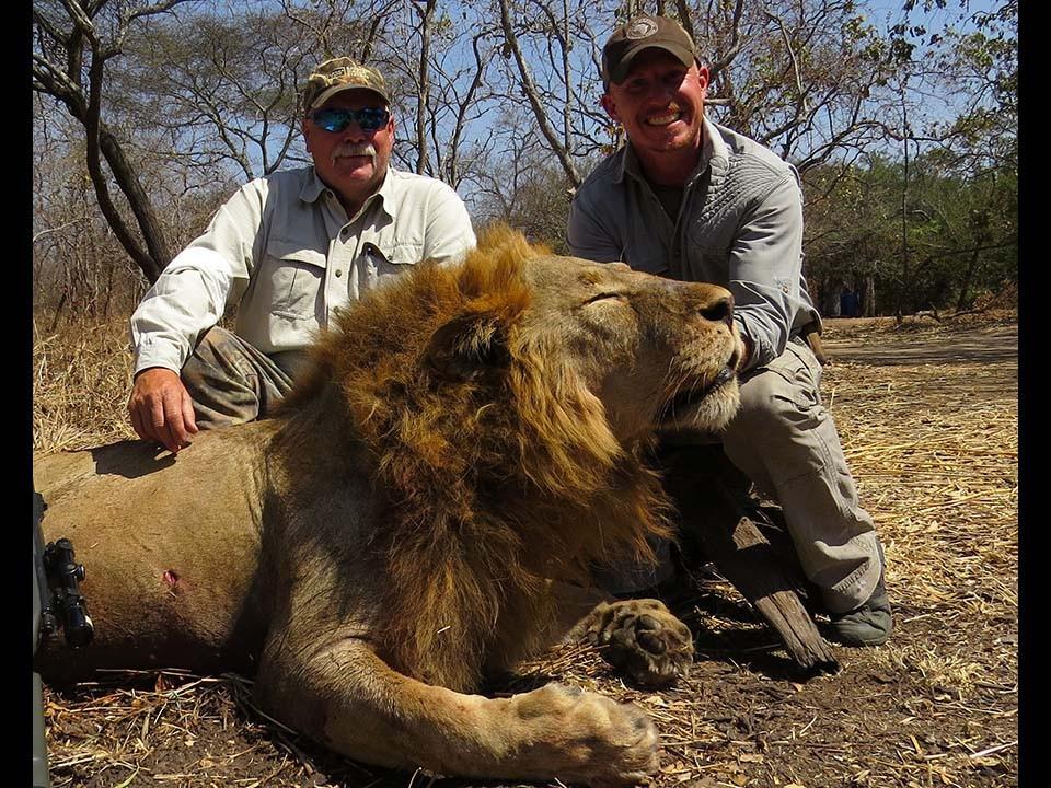lion-2015-01-639a81ee94.jpg