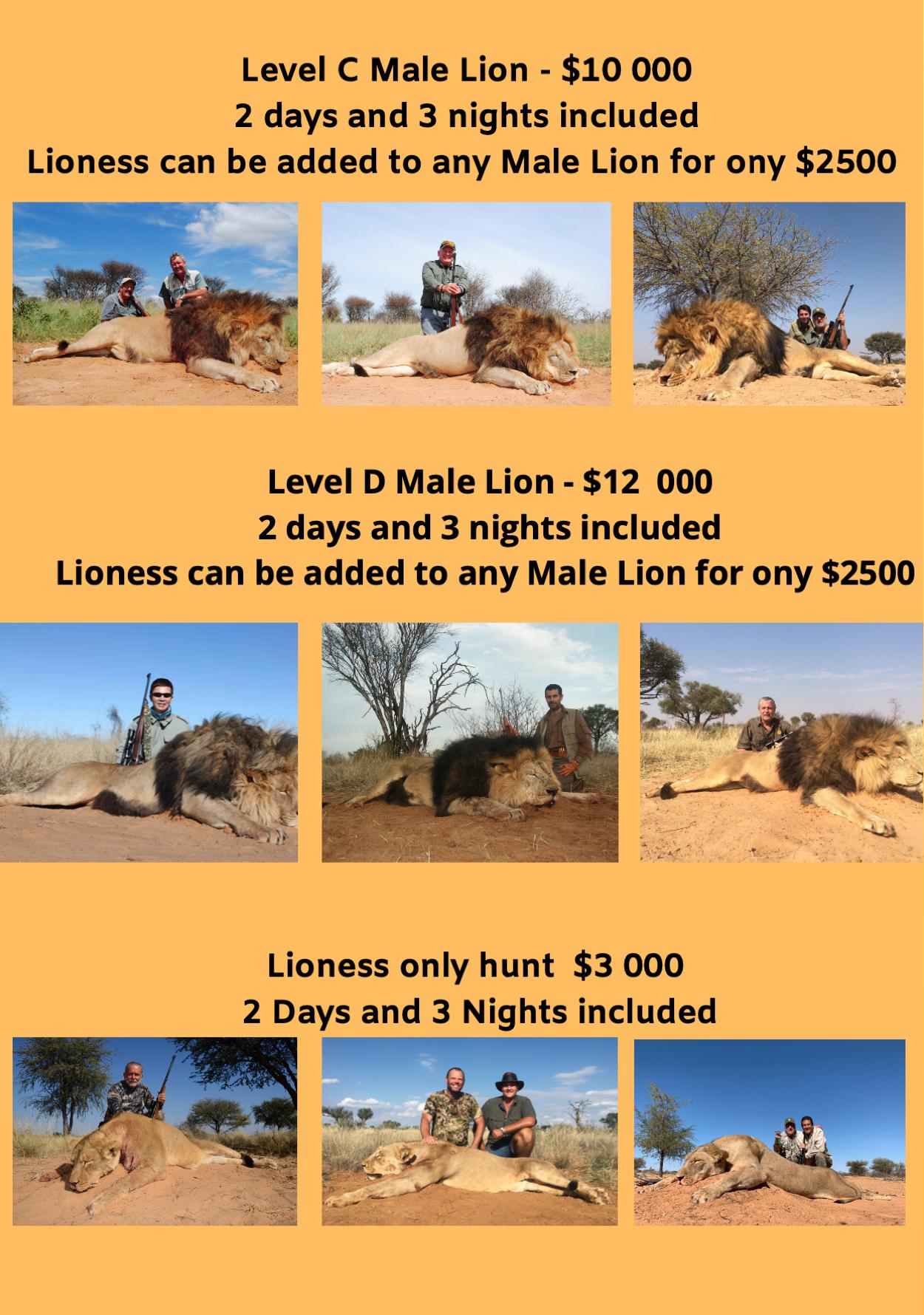 lion-hunt-02.jpg
