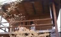 mnt cabin.jpg